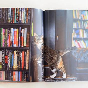 ページをめくると、愛らしいネコたちの姿がいっぱいです。こんな看板ネコたちがいっぱいいるマンハッタンに会いに行きたくなりますね。
