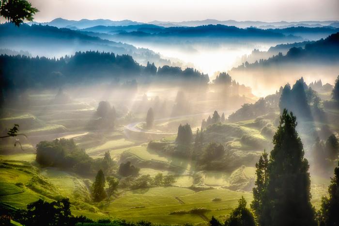 緑に包まれた大地と朝の明るい光が絵はがきのような美しい、夏の朝の清々しい光景。