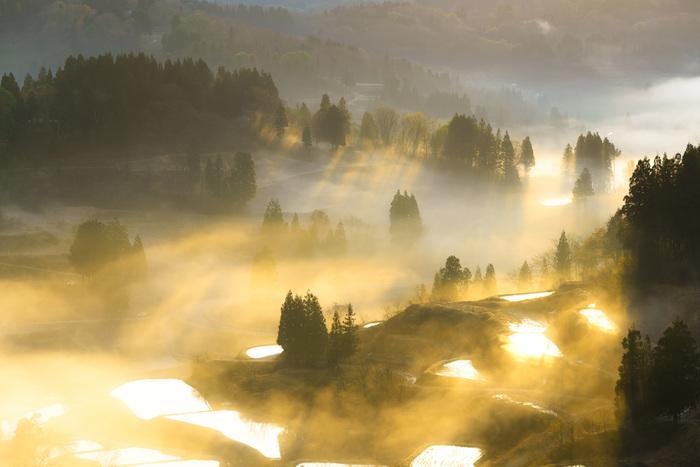 雲海の薄い衣が棚田を覆い、陽の光が筋となり束となって、この地に降り注ぐ。