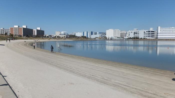 こちらは大森ふるさとの浜辺公園。