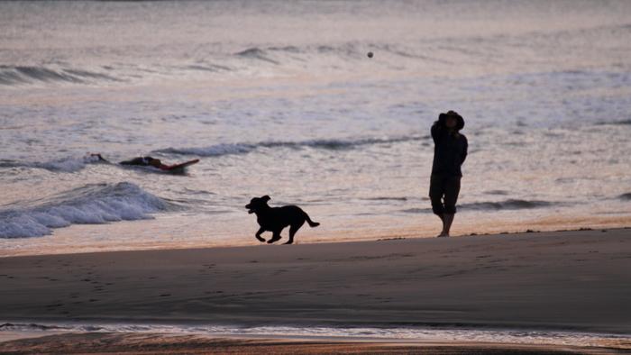山や海、高原など色々なサイトでのおすすめスポットをご紹介しましたが、いかがでしたか? それぞれ色々なスタイルの場所があるので、毎回新しいところを楽しんでみるのもよし、自分と愛犬のスタイルに合った場所を見つけてリピートするのもよし。あなたとわんちゃんにベストな遊び方を楽しんでみて下さいね。