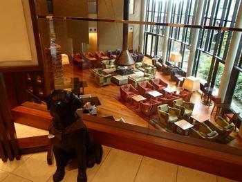国内のハイアットホテルの中で、唯一、ペット宿泊可能の客室を持つ「ハイアット リージェンシー 箱根 リゾート&スパ」。 なんと、このわんこと泊まれる「ドッグフレンドリールーム」には専用のスタッフさんがいて、チェックイン時には愛犬のグルーミングサービスもあります。