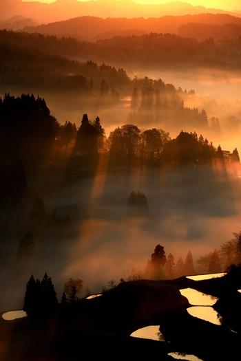 「雲」と「霧」は同じ現象です。  「雲」は大気中に浮かび、「霧」は地面に接しているものです。遠くから眺めれば「雲」でも、その中に入れば「霧」と表現されます。「雲海」とは、雲を海に例えた表現。雲から突き出た山々が、海原に浮かぶ島々に見えることから「雲海」と呼んでいます。
