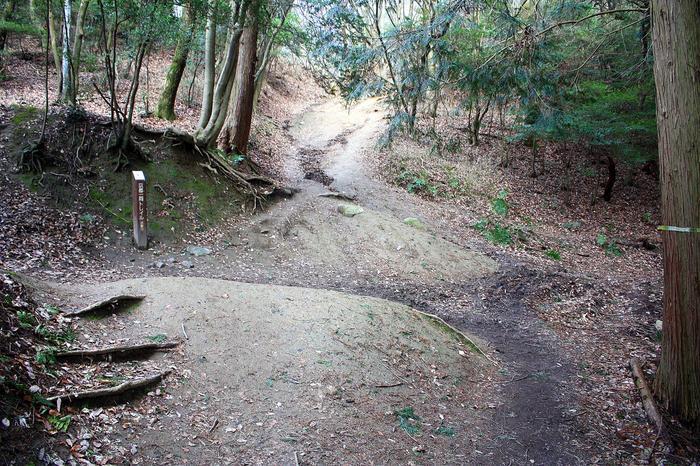 「四つ辻」は、「京都一周トレイル・東山コース」の進路と、「大文字山山頂」へ続く山道が別れるところです。「四つ辻」までくれば、山頂はすぐ目の前です。