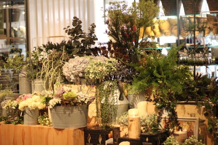 お花だけじゃなく葉物類も種類が豊富。「ジャングルみたいなお部屋」や「グリーンをダイナミックに這わせたお部屋」もメンテナンスフリーで作り上げることができます。