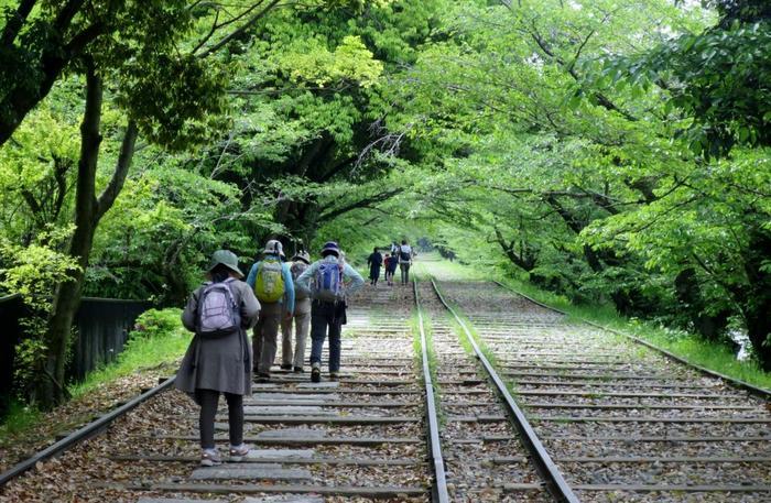 全長582mにも及ぶインクラインは、世界最長の傾斜鉄道跡。春は桜のアーチが続く名所となり、多くの人で賑わいます。