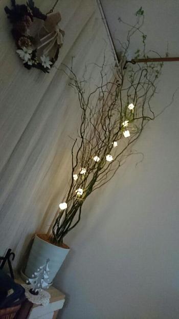 雲竜柳のナチュラルなラインに、小さなランプをデコレーションした照明。消灯時も素敵なインテリアになりそう。