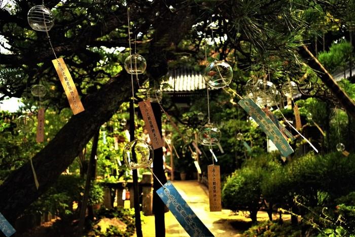 暑い夏にそっと涼を運んでくれる、風鈴の音色。そんな風鈴を存分に楽しめる「風鈴祭り」が奈良・橿原市のおふさ観音で行われています。