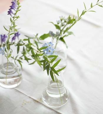 夏のフラワーアレンジメントはシンプルが一番!ガラスなど涼しげな花器に無造作にお庭の草花を飾るだけで涼しさを感じます。今回は、おすすめの草花やフラワーベースを使った夏らしいアレンジメントをご紹介します。