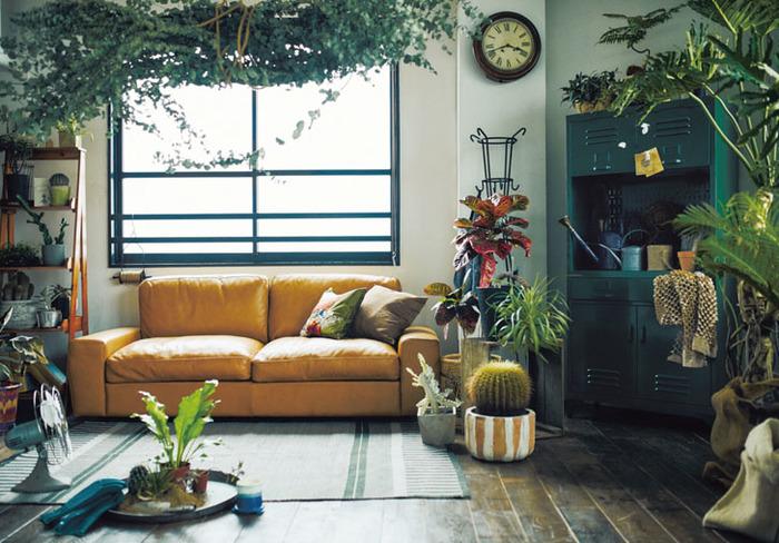 ヤシの木やサボテン・モンステラなど南国植物なら、ロコのお部屋っぽいハワイアンテイストな仕上がりに。