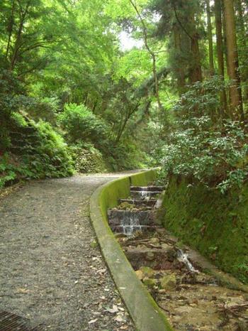 「千人塚」から、なだらかな林道を20分程下れば、銀閣寺の登山口へ到着です。