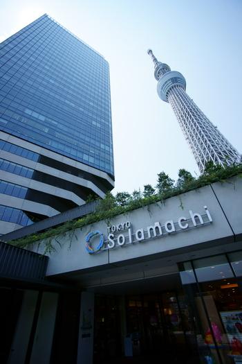 すてきな場所を発見しよう♪『東京下町さんぽ』【東京スカイツリーを見に行こう編】
