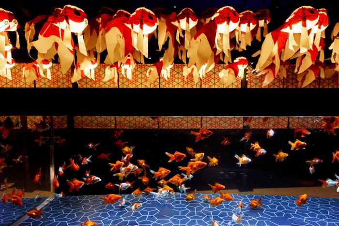 女子同士にもカップルにも、おひとりさまにもおすすめしたいのが「すみだ水族館」。一歩足を踏み入れれば、ここが都心とは思えないほどの別空間が広がります。  8月31日までは、「東京金魚ワンダーランド」を開催。全長100メートルほどのエリアに、約20品種、1000匹ほどの金魚が展示されています。夏の風物詩である金魚の魅力を思う存分味わって。 ※写真はイメージ