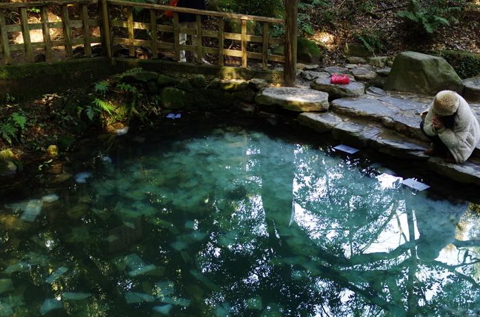 「八重垣神社」は日本神話に出てくる「素盞嗚尊(すさのおのみこと)」と「稲田姫(いなたひめ)」の夫婦が祀られている縁結びで有名な神社です。また、拝殿から少し離れた小さな森の中にある「鏡の池」の占いが人気。