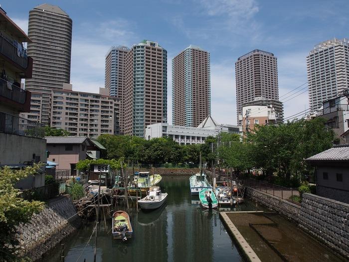 ところで佃煮は、今では日本全国各地に佃煮の産地があり各地で食されていますが、その始まりは江戸時代まで遡ります。江戸時代、佃島(東京都中央区佃島)の漁民の方達が、湾内で採れる小魚や貝類を醤油などで煮込んで保存食にしたことからきているそうで、佃島で作るので佃煮と呼ばれるようになったといいます。