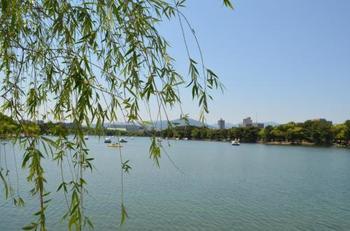 いかがでしたか?福岡には今回ご紹介した以外にも、いろんな観光スポットがあります。ぜひ、福岡を楽しんでみてくださいね。