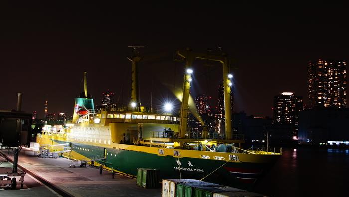 御蔵島へのアクセスはゆりかもめ「竹芝駅」に隣接している「竹芝桟橋」より三宅島 – 御蔵島 – 八丈島の3島を一日一往復するフェリーが毎日就航しています。22時30分に竹芝を出航し、翌日05:55に御蔵島に着きます。