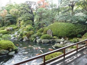 このお宿はお庭も素晴らしいんです。アメリカの日本庭園専門誌で高評価を得た功績も。せっかくなので、浴衣を着てお庭を散歩するのもおすすめです。