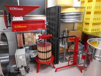 住宅街にある小さなお店の奥に、こんな醸造スペースが! 8月から11月は醸造シーズンなのだそうです。