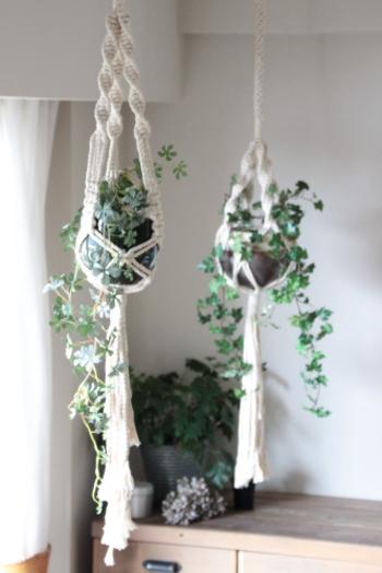 グリーンに白を合わせるのも素敵な組み合わせ。 落ち着いた雰囲気を楽しめます。