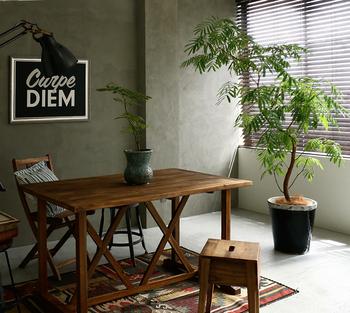 個性的なルックスがお洒落な『エバーフレッシュ』は、置くだけで部屋全体がモダンなカフェ風にランクアップ。ワイルドな風合いはコンクリート壁の部屋にもよく似合います。