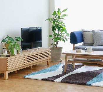 置くだけで部屋がお洒落にランクアップする、観葉植物。それだけでなく、保湿・浄化作用が高くリラックス効果が高いのも魅力です。