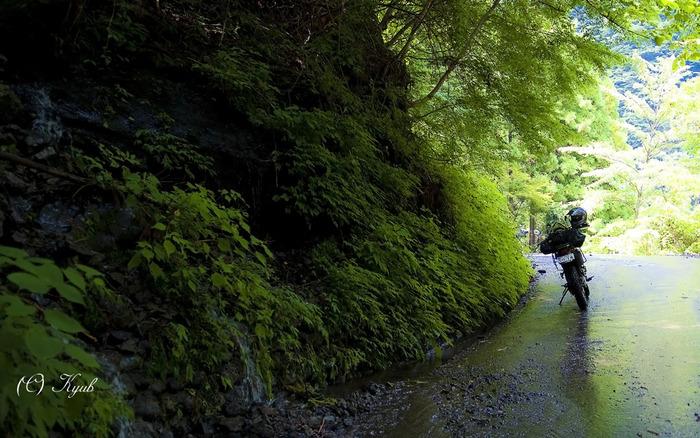 剣山スーパー林道とは、徳島県上勝町と那賀町を結ぶ全長87.7キロメートルの林道です。林道としては日本最長のもので、バイクの人気ライディングスポットでもあります。