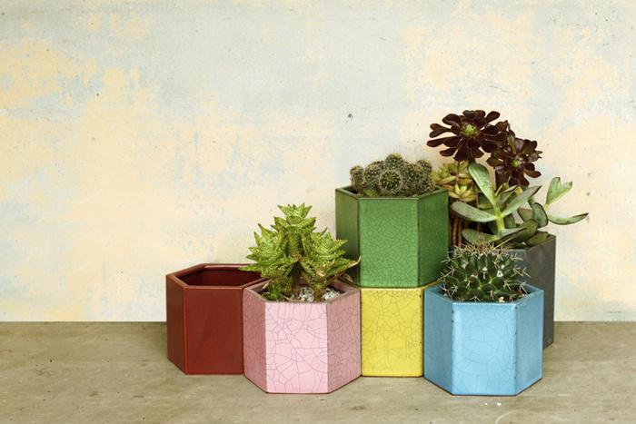 六角形のプランター。蜂の巣のように、連結することができます。同色の受け皿も販売されているので、多肉植物以外の植物にも利用できます。