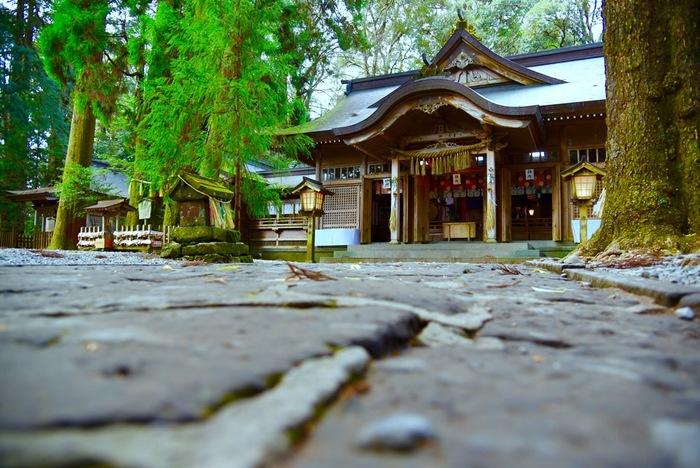 1900年前に創建された高千穂神社。高千穂郷には554社もの神社のがありますが、その中でも最も格が高い88の神社を「高千穂八十八社」といい、その総社が高千穂神社なんです。高千穂の中で、一番頂点の神社ということですね。