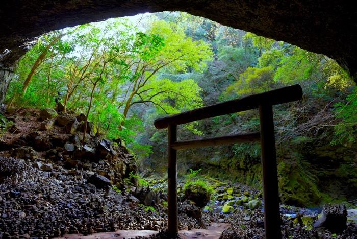 古事記や日本書紀に記されている天照大神が岩戸隠れしたという神話が有名ですが、その洞窟が「天岩戸(あまのいわと)」です。その天岩戸を御神体として祭っているのが「天岩戸神社」なのです。