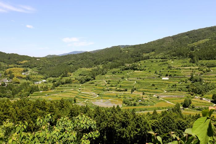 棚田が広がるなだらかな丘陵地帯に位置する本山町は、「天空の郷」とも呼ばれており景勝地の宝庫でもあります。
