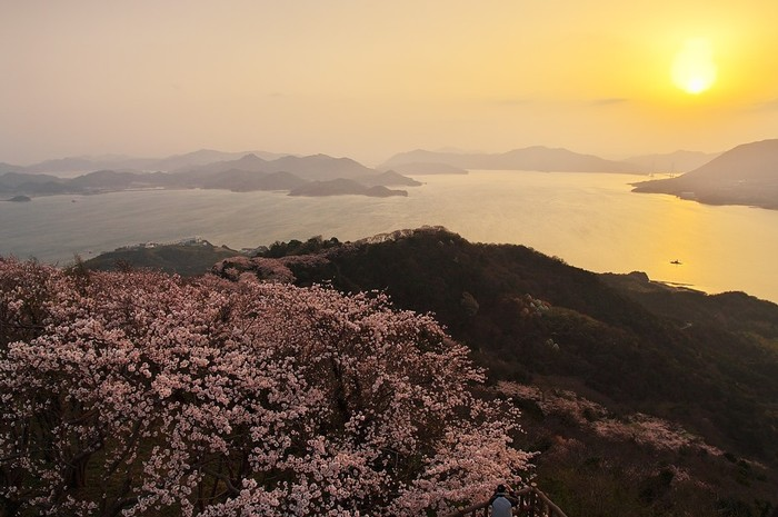 愛媛県の上島町は、瀬戸内海に浮かぶ大小18の島で構成される町です。複雑に入り組んだ海岸線、瀬戸内海に浮かぶ大小の島々が織りなす上島町は、絶景の宝庫でもあります。