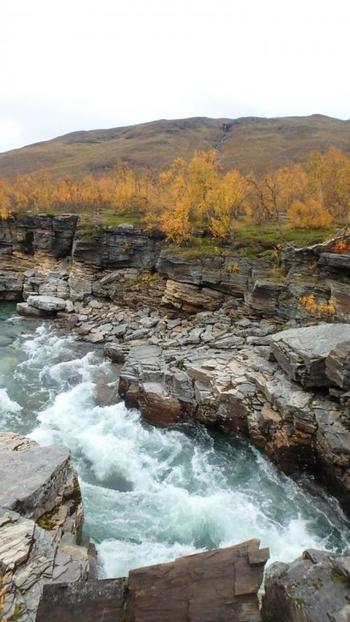 雪解け水でが流れている川は飲み水としても飲めるそうです。
