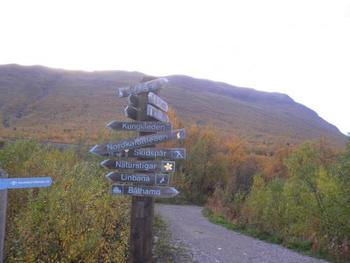 スウェーデンは緯度が高いこともあり、秋も日本より早く訪れます。特にスウェーデンは南北に長い国土なので北の方は夏が短く、秋~冬がやってくるまであっというま。