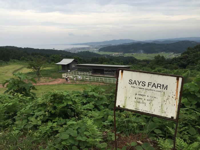 富山県氷見に佇む素敵な農園レストラン&ワイナリー「セイズファーム」