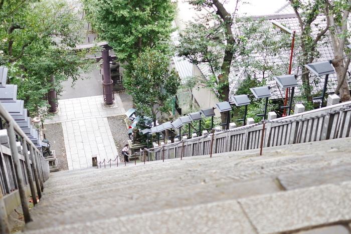 「出世の階段」上からの眺めは、思わず足がすくんでしまう急角度。愛宕山は東京23区内で最も高い自然の山で、現在のようにビルが立ち並ぶ前は遥か遠くまで見渡せたため、火事の見張り所としても使われていたそうです。  ちなみに、出世の階段を下るのは縁起が悪いとも言われているので、下る時は隣のややなだらかな女坂を使いましょう。