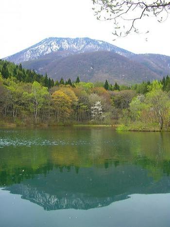 長野県「信州信濃町 癒しの森」は約1.2km〜7kmと、体力に応じて歩ける3つのコースが用意されています。森林メディカルトレーナーのサポートのもと、1泊2日のショートステイから14泊15日の長期の保養までプログラムがあります。保養地として歴史がある信濃だけに、ペンションでの滞在も楽しみのひとつ。