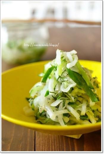 大葉やみょうが、生姜などの薬味をたっぷり使った大人好みのサラダです。みずみずしいきゅうりと薬味がなじみ、たくさん食べられそう。きゅうりは薄く細く切ると、タレと絡みやすくなるので試してみてくださいね。