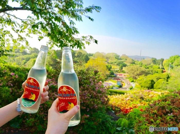 いかがでしたか?能古島は「福岡市街をもっと楽しみたい」「自然が好き」という方におすすめです。日帰りで行くことができるので、福岡を訪れた際はぜひ、能古島まで足を伸ばしてみて下さいね!
