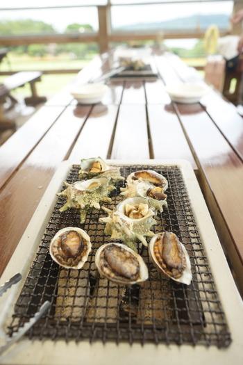 団体で予約すれば、予算に合わせて伊勢海老やアワビなどの海鮮やステーキ肉なども用意してもらえます。新鮮な海鮮はプリプリで美味しいですよ。