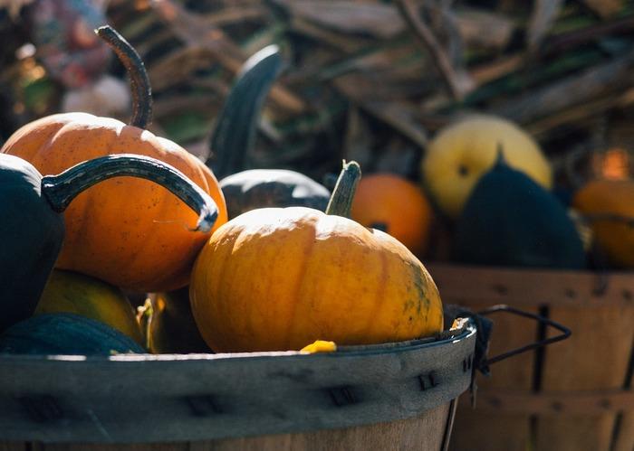 かぼちゃは、からだの巡りを良くしてぽかぽか温めてくれます。ゆっくりじっくりおなかが温まります。