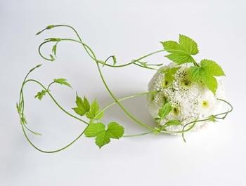 吸水スポンジを使って作ります。和・洋、いろいろなアレンジできる♪ 白い菊の花言葉は*真実*(^^)…