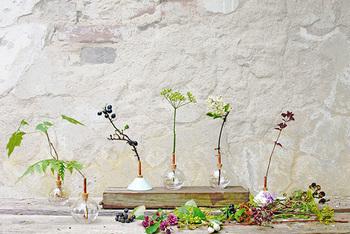 すぐに用意できないときは、花瓶に緑を飾って、テーブルの上に置いてみましょう。