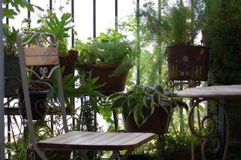 グランピングのポイントは、身近に自然が感じられること。 植物を多めに飾って、雰囲気をつくっていきましょう。