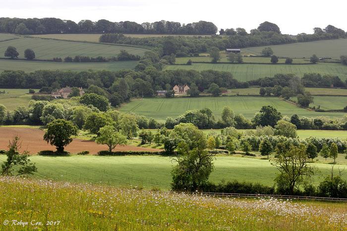 「羊の丘」という意味をもつコッツウォルズは、イングランド中央部に広がるなだらかな丘陵地帯です。特別自然景観地域にも指定されているコッツウォルズは、イギリスを代表する景勝地の一つで、イギリス国内外から大勢の観光客がこの地を訪れています。