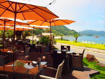 """糸島へと向かうサンセットロードにある「パームビーチ」は、糸島産の食材を使用した""""地産地消""""の料理が魅力のレストランです。オープンテラス席もあり、道を挟んだ先には海が広がっています。ヤシの木もあり、その雰囲気はまるで海外のよう。"""