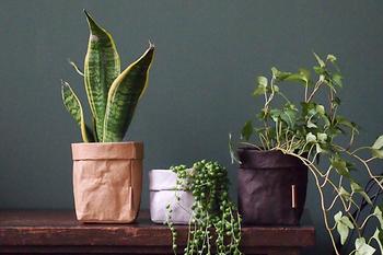 新聞古紙を主原料とし、環境にもやさしいセルロースファイバーと呼ばれる天然の木質繊維から作られている「UASHMAMA(ウォッシュママ)」のペーパーバッグ。
