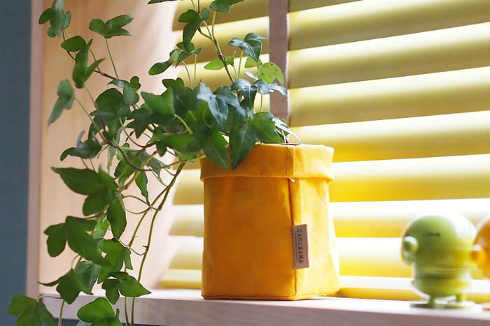 前述しましたが、汚れたら洗えるので、観葉植物の鉢カバーとして使用するのに◎。とくにあたたかみのあるマスタードカラーは植物との相性も良く、部屋を明るくしてくれそう。