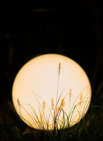 ところで、「十五夜(じゅうごや)」「十三夜(じゅうさんや)」は、どちらも旧暦に由来していて、今年(2017年)の十五夜(じゅうごや)は10月4日になります。必ずしも満月とは限りませんが丸く美しい月が見えるはず。  *十三のほうが数字が小さいので先かと思う方もいるかもしれませんが、「十五夜」は旧暦8月15日、「十三夜」は旧暦9月13日を指しています。