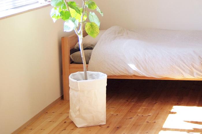 シンプルで清潔感のあるホワイトは、背の高い観葉植物の蜂カバーとして使用すれば、お部屋の色合いをナチュラルにまとめてくれそう。